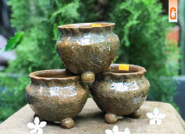 Nơi mua bán chậu trồng cây bonsai mini để bàn giá rẻ đẹp chất lượng tại tphcm